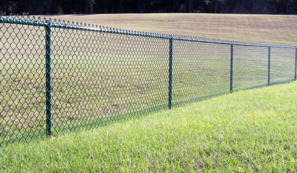 new chain link fence for dogs